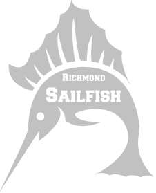 sailfish_silver